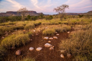 Kimberley landscape by Tc Nguyen